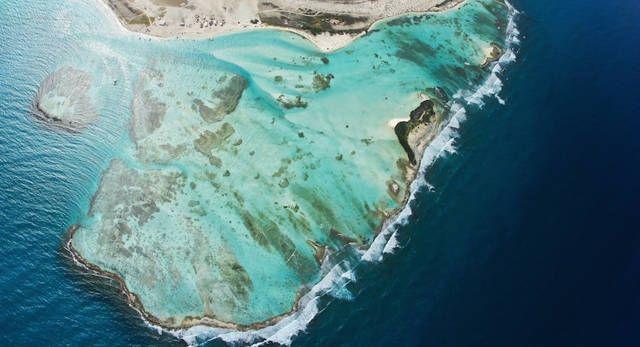 Si su hijo paga como un adulto para viajar a la Isla de la TORTUGA tenemos la solución