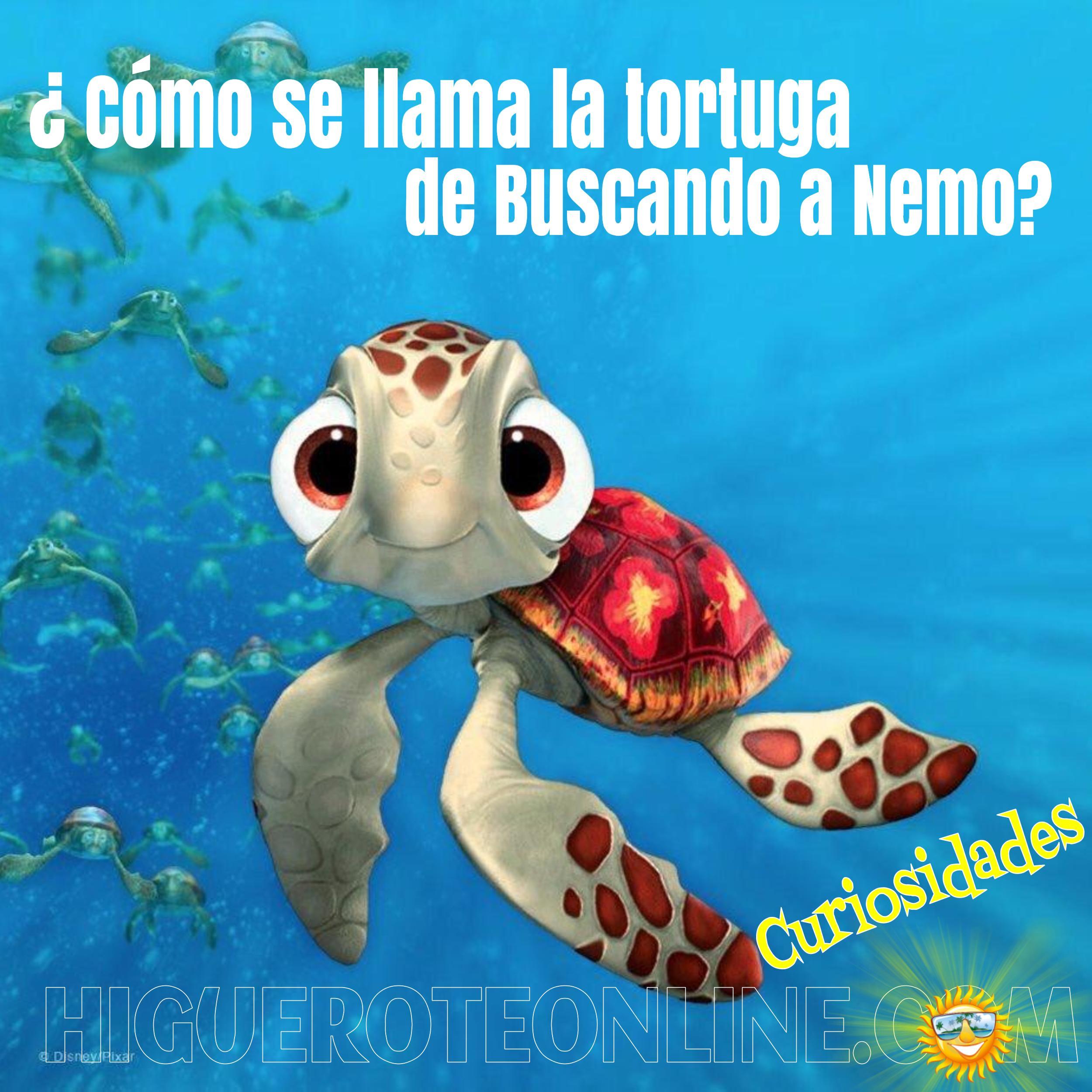 Como se llama la tortuga de Buscando a Nemo